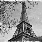 Half a Eiffel Tower by ea-photos