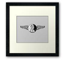 flying penny Framed Print