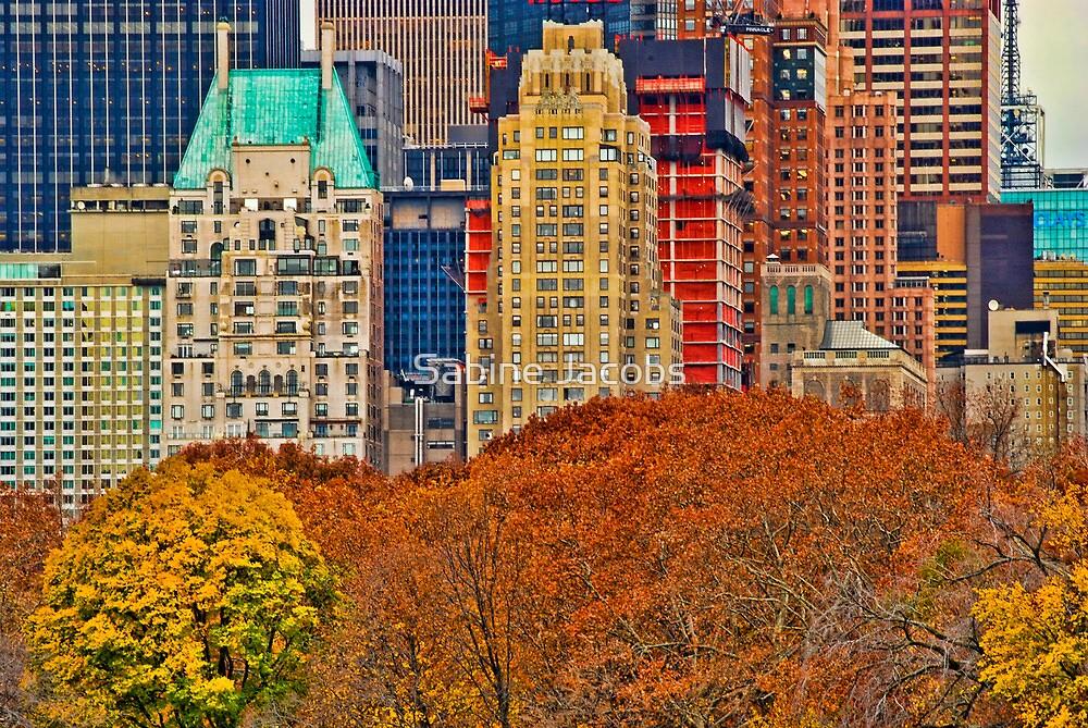 Central Park South ~ New York City ~ USA by Sabine Jacobs