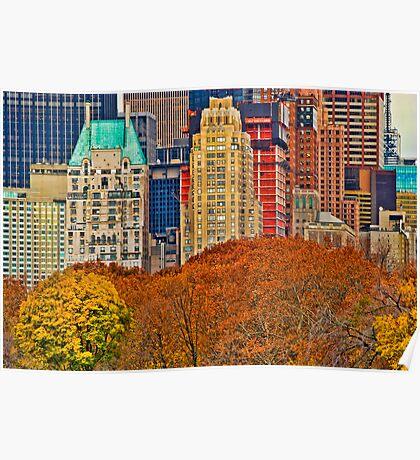 Central Park South ~ New York City ~ USA Poster