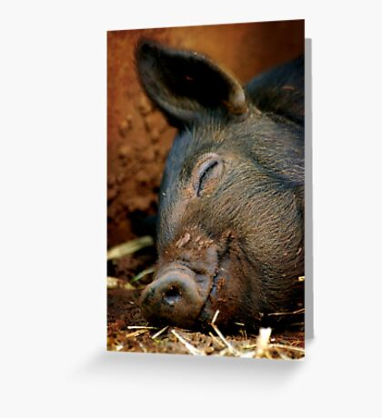 Perfect Piglet XII Greeting Card