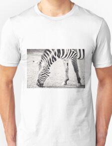 Black and White Zebra Unisex T-Shirt