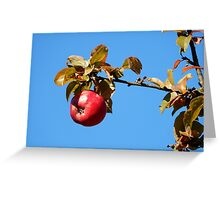 Apple - autumnal red Greeting Card