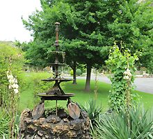Feature Fountain, 'Open Gardens Week' Adelaide Hills. S.A. by Rita Blom