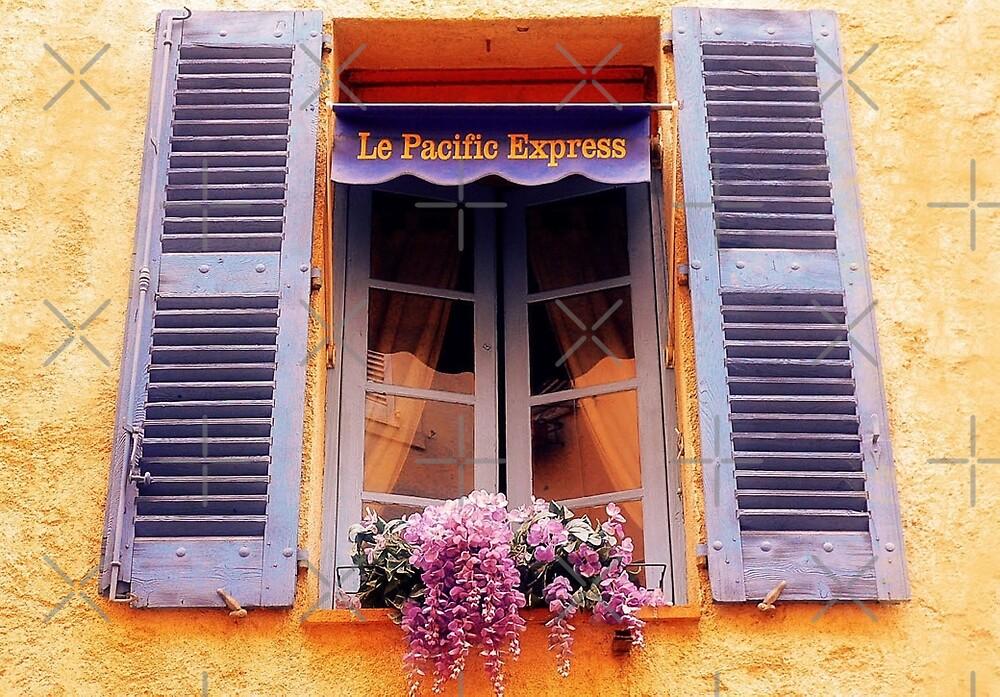 French Window by EvaMarIza