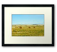 harvest on the prairies Framed Print