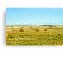 harvest on the prairies Canvas Print