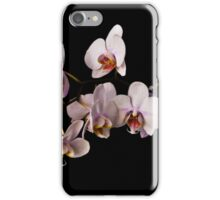 ORCHID 1 iPhone Case/Skin