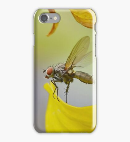 The Second Before Flight iPhone Case/Skin