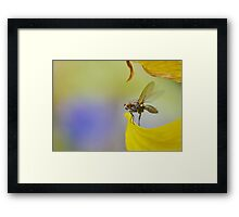 The Second Before Flight Framed Print