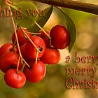 Berries 'n' bokeh - Christmas card by Celeste Mookherjee
