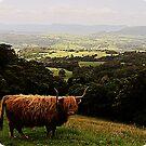 Highland Vista by Masterclass