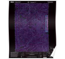 USGS Topo Map Washington State WA Bernier Creek 240022 2000 24000 Inverted Poster
