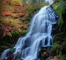Fairy Falls IV by Tula Top