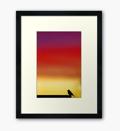 Dawn's Morning Chorus Framed Print