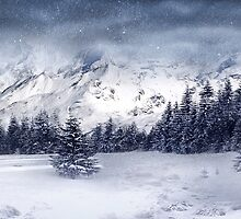 Let it Snow by Svetlana Sewell