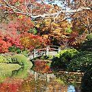 Fall in the Japanese Gardens by Vivian Sturdivant