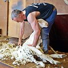 Shearer at Work by Julie Sleeman