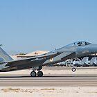 F-15C Eagle #WA AF 83-0019 Landing by Henry Plumley