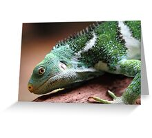 """Lizard"" Greeting Card"