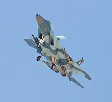 F-15C Eagle #WA AF 80-0018 by Henry Plumley