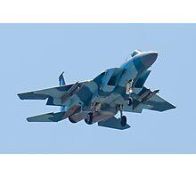 Head On WA AF 78-0485 F-15C Eagle Photographic Print
