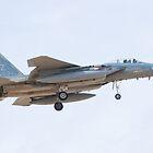 ZZ AF 81 0042, F-15C Eagle On Approach by Henry Plumley
