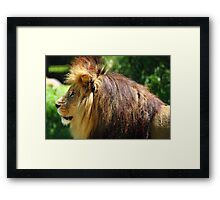 """This Is My Magnificent Side"" Framed Print"