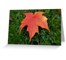 Oh Canada =) Greeting Card