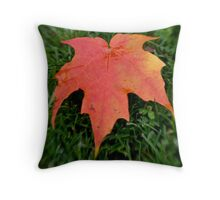 Oh Canada =) Throw Pillow