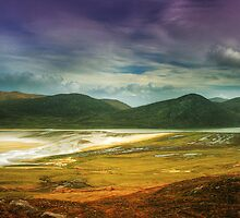 Scaristavore by Jim Barter