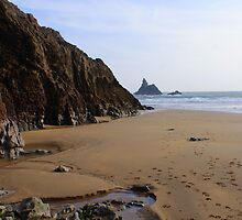 Broad Haven  by Sally J Hunter