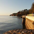 A Dawlish sunrise in December by daynov