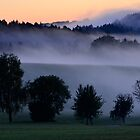 After Sunset.............Black Forest by Imi Koetz