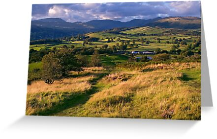 The View from Orrest Head - The Lake District by Dave Lawrance