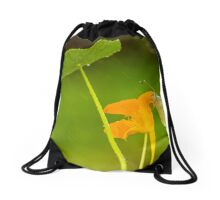 Large white also called cabbage butterfly or cabbage white on a Monks cress Drawstring Bag