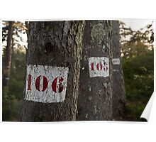 Tree is the magic number Poster