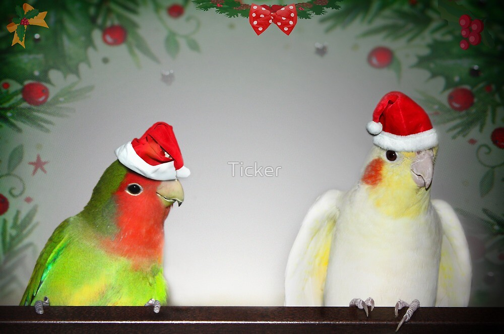 We can fly better than Reindeer! by Ticker