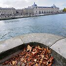 Autumn à Paris by Peppedam