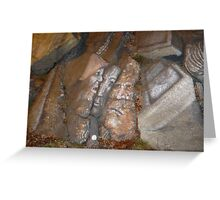 Faces on Rock III Greeting Card