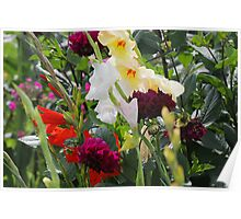 Multi-coloured flowers Poster