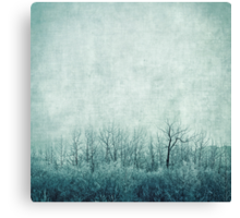 pondering silence Canvas Print