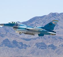 #WA AF 86 0271 F-16C Fighting Falcon by Henry Plumley