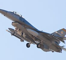 #WA AF 90 0747, F-16C Fighting Falcon by Henry Plumley