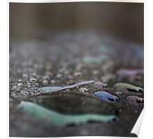 Coloured Waterdrops II Poster