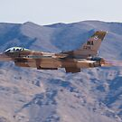 WA AF 86-0291 F-16C Fighting Falcon by Henry Plumley