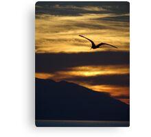 The night is coming the birds are going - La noche viene los pajaros regresan a sus lugares  Canvas Print