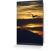 The night is coming the birds are going - La noche viene los pajaros regresan a sus lugares  Greeting Card