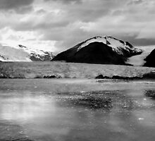 Amalia Glacier, Chile ~ Black & White by Lucinda Walter