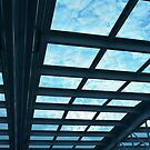 Blue Roof by Steve